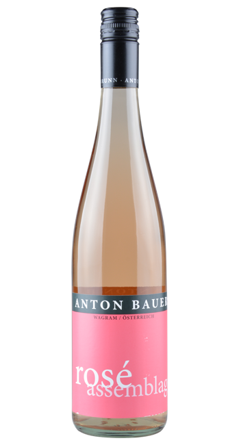 Rosé - Wagram - Österreich | 2019 | Anton Bauer | Österreich