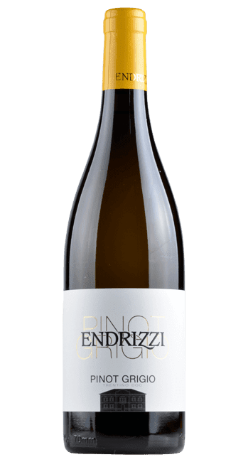 Pinot Grigio -  Trentino - Italien | 2018 | Endrizzi | Italien