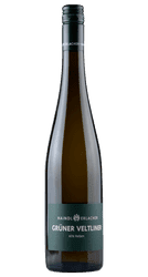 Grüner Veltliner - Alte Reben - Weinviertel - Österreich | 2018 | Haindl-Erlacher | Österreich