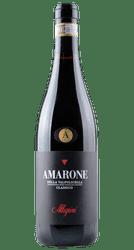Amarone della Valpolicella - Classico - Venetien - Italien | 2016 | Allegrini | Italien